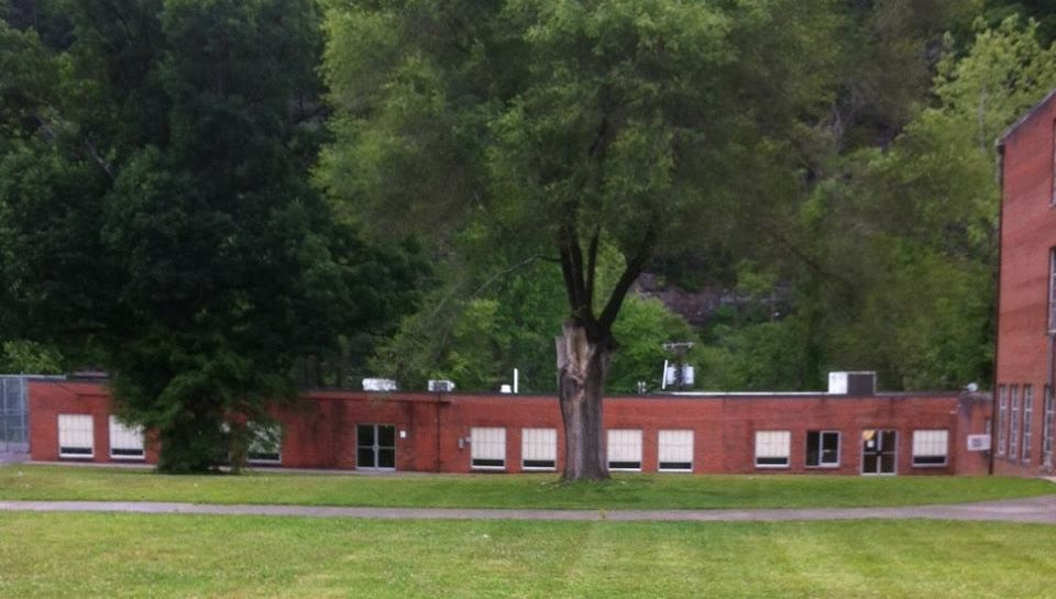 Pineville Library